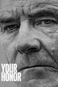 Your Honor: Season 1